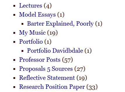 Portfolio Category